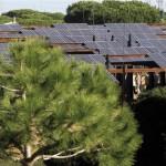 Doñana ahorrará un 23% con un Plan de Eficiencia Energética
