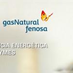 Manual de Eficiencia Energética Pymes