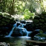 El MARM promueve 22 proyectos de I+D en Parques Nacionales