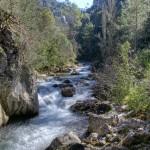 WWF: Las unidades de gestión de ríos deberían ser sus cuencas