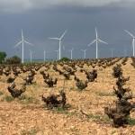 Castilla-La Mancha duplicará los empleos verdes en 5 años