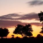 Reglamento de Evaluación Ambiental de la Comunidad Autónoma de Extremadura