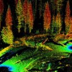 La UPV desarrolla un software para la gestión forestal