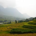 Percepción y paisaje