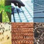 Europa invierte 35 millones de € en ecoinnovación