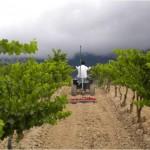 Viticultura y SIG