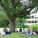Salidas profesionales de los licenciados en Ciencias Ambientales