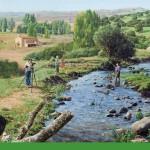 Evaluación de los Ecosistemas del Milenio