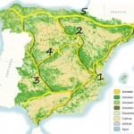 "El proyecto ""Ardilla: Connecting Life"" conectará España con corredores ecológicos"