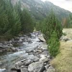 La Red de Parques Nacionales tendrá un Plan de Seguimiento y Evaluación