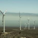 PANACEX denuncia a la UE la falta de Evaluación Ambiental Estratégica en parques eólicos