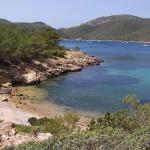 Primeros resultados de la Red de Seguimiento del Cambio Global en la Red de Parques Nacionales
