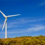 Una mejor metodología de diseño minimizaría los daños de los parques eólicos