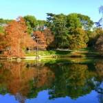 Actividades ambientales 9-11 de Diciembre