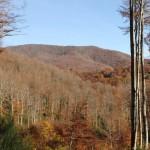 Mina de Zilbeti: Conservar el paisaje protegido o mantener puestos de trabajo