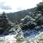 Andalucía a la vanguardia en la lucha contra el cambio climático