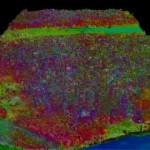 La selva amazónica cartografiada con todo detalle