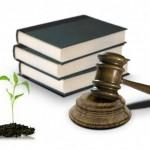 El CES pide simplificar y armonizar la legislación ambiental