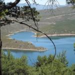 WWF recuerda a Medio Ambiente que debe aprobar la legislación sobre aguas