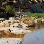 Actividades Ambientales 30 de Marzo – 1 de Abril