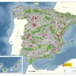 Medidas compensatorias en la Red Natura 2000. Una propuesta terminológica