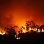 El incendio que ataca las Fragas do Eume reaviva las movilizaciones ciudadanas