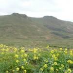 Actividades ambientales 13 – 15 de Abril