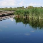 El Gobierno aprobará hoy previsiblemente las reformas de la Ley de Aguas y Residuos