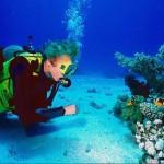 Los buceadores podrán contribuir a la vigilancia ambiental del medio marino