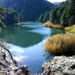 La Comisión Europea abrirá expediente a España por daños ecológicos en la Sierra de Cazorla
