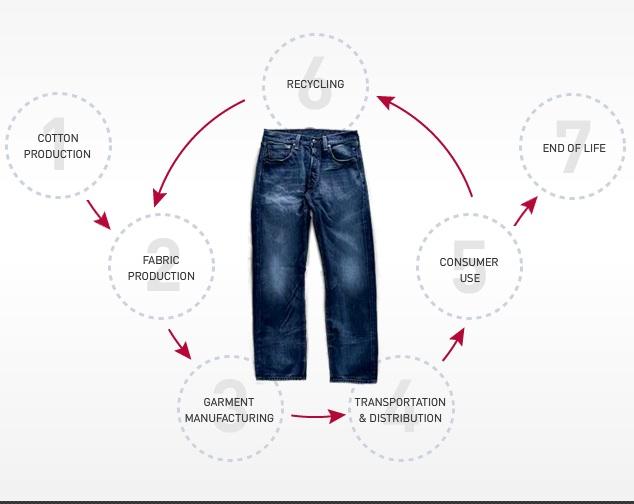 fragmento pasatiempo discordia  Levi's integra el análisis del ciclo de vida del producto en su proceso de  fabricación   Comunidad ISM