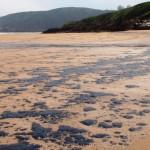 Marea negra por un vertido de fuel en el litoral asturiano