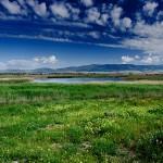 Medio Ambiente y WWF firman un convenio para reforestar los terrenos cercanos a las Tablas de Daimiel