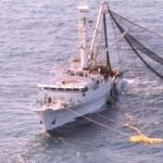Bruselas propone prohibir gradualmente la pesca de arrastre
