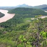FAO ayudará a diez países africanos en mejora de vigilancia de sus bosques
