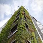 Fachadas vegetales para mejorar la eficiencia energética en edificación