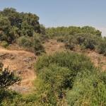 Aprobado el anteproyecto de la Ley de Viviendas Rurales Sostenibles de Madrid