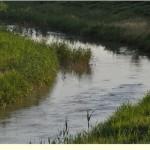Medio Ambiente tendrá listos los planes de cuenca a finales de 2013