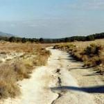 WWF y Correos se unen para recuperar antiguas tierras de cultivo del municipio de Lorca