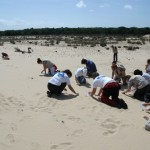 El Ministerio desarrolla un programa de voluntariado en playas para la mejora y conservación del litoral español
