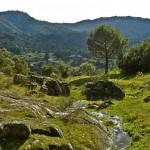 Actividades ambientales 22 – 23 de Septiembre