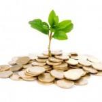 """El Gobierno estudiará la creación de un """"Fondo Verde"""" para para financiar proyectos sostenibles"""