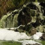 Ministerio y Junta trabajarán en las obras de depuración en el entorno de Doñana