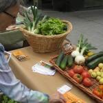 La agricultura ecológica, sector en alza frente a la tradicional