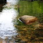 Los Veintisiete apuestan por mejorar la calidad y la gestión de las aguas
