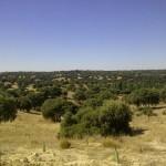 La Comunidad de Madrid realiza mejoras en la ZEPA Alberche – Cofio