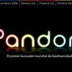 Si tienes una IDEA tienes Pandora