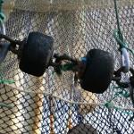 El Parlamento Europeo decide hoy la reforma de la Política Pesquera Común (PPC)