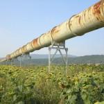 La modificación de la Ley de Responsabilidad Medioambiental en participación pública