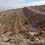 Endesa recupera la antigua escombrera de la térmica de Carboneras